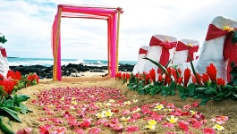 Planning Your Outdoor Wedding Decorations